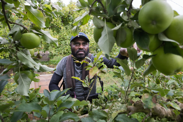 更多的移民意味着更低的工资?