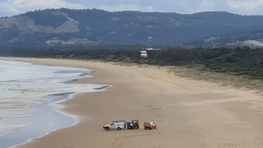 科夫斯港附近的翡翠海滩发生鲨鱼袭击,冲浪者死亡