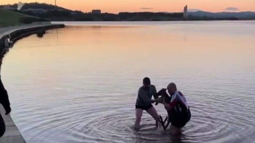 堪培拉男子清晨下水将