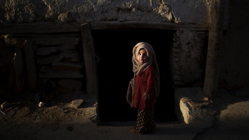 塔利班被指控杀害平民,阿富汗人面临武装分子统治的严峻现实